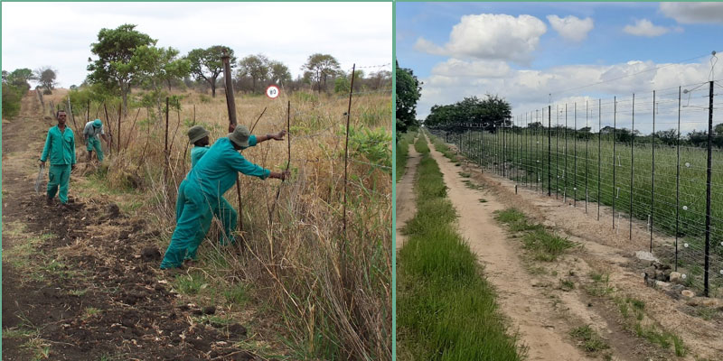 The TPNR habitat team maintaining the southern fence line in 2004; 2020 shows a significant investment in perimeter-fence upgrade to ensure the safety of wildlife and the adjacent community.